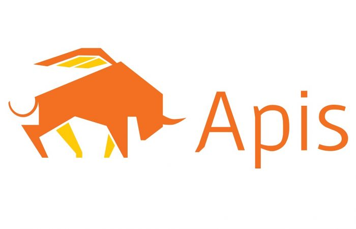 1024x768 Apis Group Logo