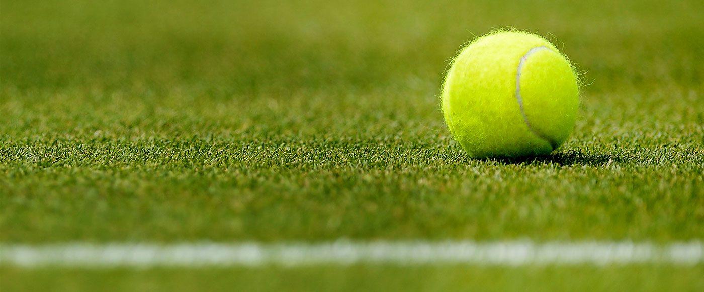 grass_court_1400x580