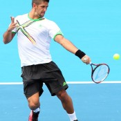 Verdasco's forehand is a fluid movement.
