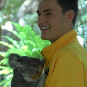 Bernard Tomic hugs a koala at the Lone Pine Koala Sanctuary in Brisbane. Kim Trengove/Tennis Australia
