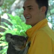 Bernard Tomic hugs a koala at the Lone Pine Koala Sanctuary in Brisbane. Kim Trengove/Tennis Australia