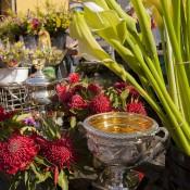 The Australian Open trophies among the waratahs at Hobart's Salamanca Markets; Tennis Australia