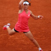 Sam Stosur tees off on a forehand during her second round win over Kristina Mladenovic of France on Day 5 of the French Open at Roland Garros in Paris, France; Getty Images