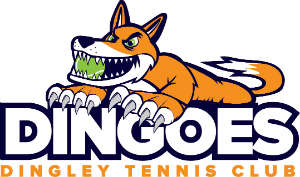 Dingoes Logo web