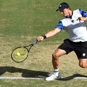 Jozef Kovalik in action during his loss in the second singles rubber to Bernard Tomic; Getty Images